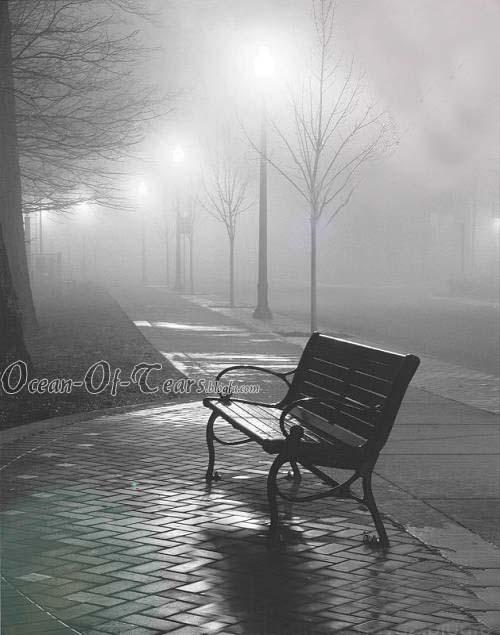 http://arash-moghimian.persiangig.com/image/ocean-of-tears/nimkate%20khali.jpg